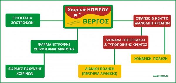 οργανογραμμα_ΒΕΡΓΟΣ-final